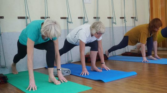 How Transcend Health Physio Newcastle Can Make Your Life Better?